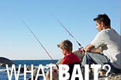 What bait? What fish?